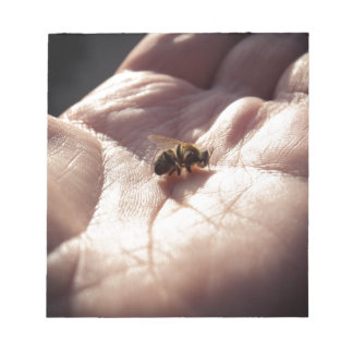 Dying bees notepad