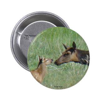 E0003 Cow Elk and Calf button