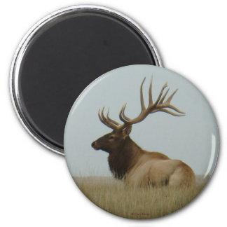 E0005 Bull Elk 6 Cm Round Magnet