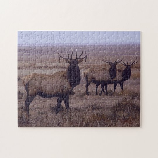 E0019 Bull Elk Jigsaw Puzzle