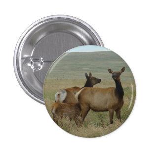 E0061 Cow Elk and Calf 3 Cm Round Badge