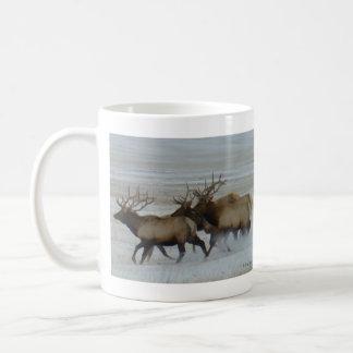 E0064 Bull Elk Basic White Mug
