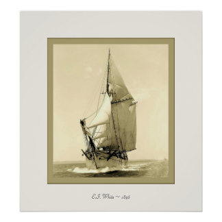 E.I. White ~ 1896 ~ Vintage Photograph Poster