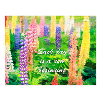 Each Day is a New Beginning Colourful Lupine Postcard