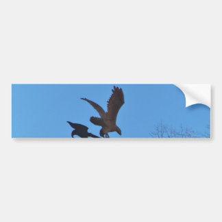 Eagle and Arrow Weather vane blue skys Bumper Sticker