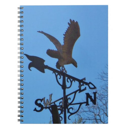 Eagle and Arrow Weather vane blue skys Notebook