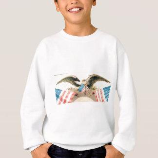 eagle and flags seal sweatshirt