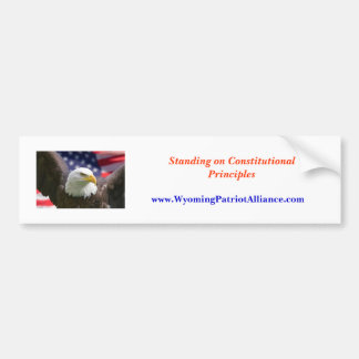 eagle beginning best, Standing on Constitutiona... Bumper Sticker