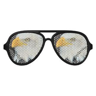Eagle Bird Aviator Sunglasses