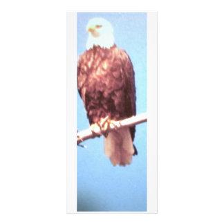 Eagle Bookmark/Rack Card Rack Card