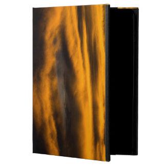 eagle burnout iPad air case