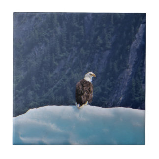 Eagle Chilling on an Iceberg Coaster