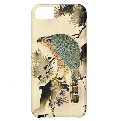 Eagle Eye 1870 Case For iPhone 5C