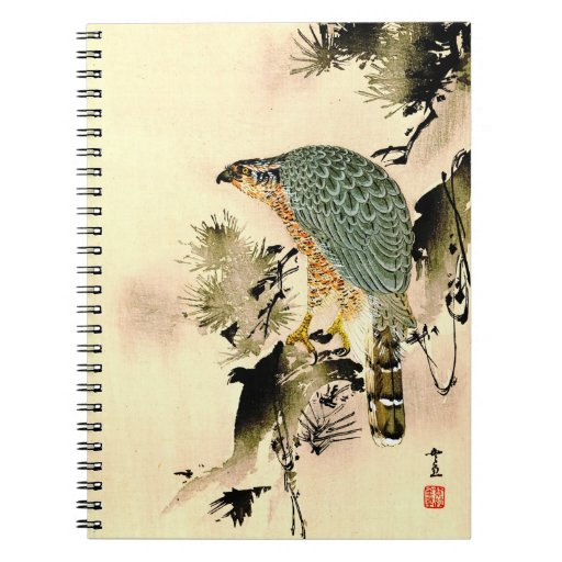 Eagle Eye 1870 Notebook