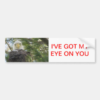 Eagle Eye Car Bumper Sticker