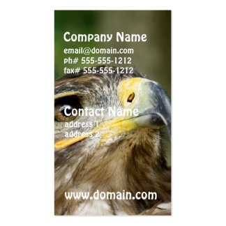 Eagle Eye Business Cards