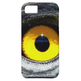 Eagle Eye iPhone 5 Covers