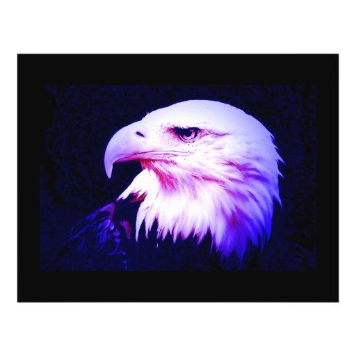 Eagle Eye Custom Flyer