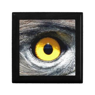 Eagle Eye Keepsake Box