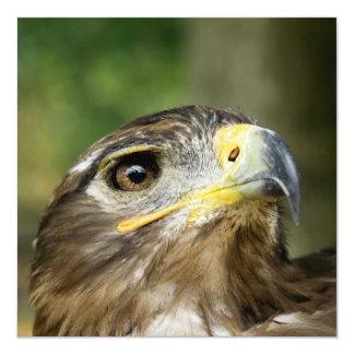 Eagle Eye  Invitations