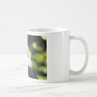 Eagle Eye Coffee Mugs