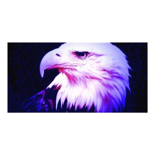 Eagle Eye Photo Cards
