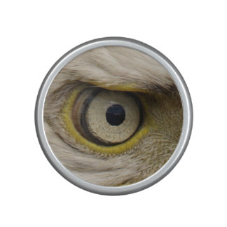 Eagle Eye Raptor Funny Photo Speaker
