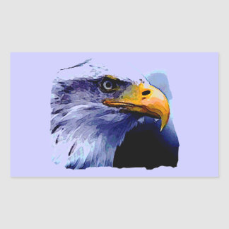 Eagle Eye Rectangular Sticker