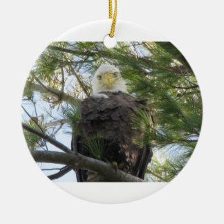 Eagle Eye Round Ceramic Decoration