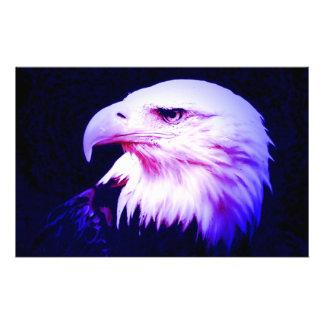 Eagle Eye Stationery Design
