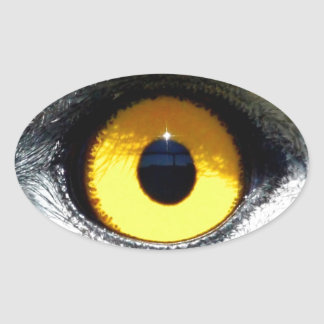 Eagle Eye Oval Sticker