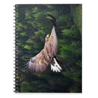 Eagle Eye View Notebook