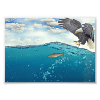 Eagle fishing photo print