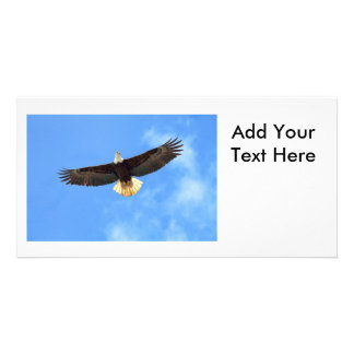 Eagle Flying Photo Card Template