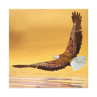 Eagle flying to the sun - 3D render Canvas Print