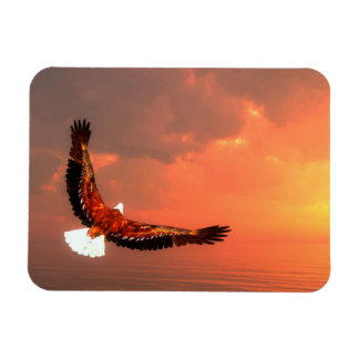 Eagle flying to the sun - 3D render Magnet