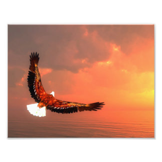 Eagle flying to the sun - 3D render Photo Print