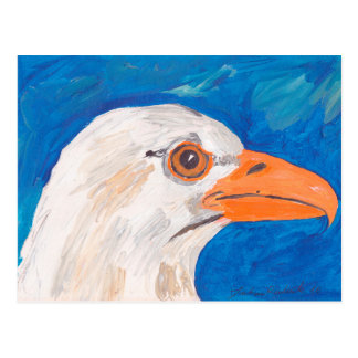 Eagle Head Postcard