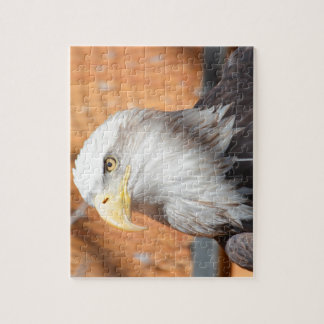 Eagle In God we trust Jigsaw Puzzle