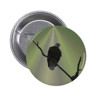 eagle in light ray pinback button