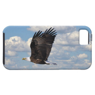 Eagle iPhone 5 Case