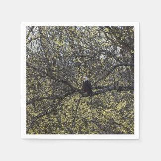 Eagle Lookout Painterly Disposable Napkins
