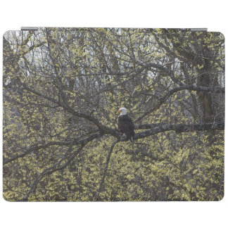 Eagle Lookout Painterly iPad Cover