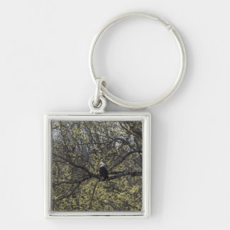 Eagle Lookout Painterly Key Ring