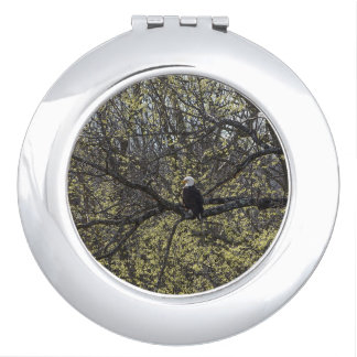 Eagle Lookout Painterly Makeup Mirrors