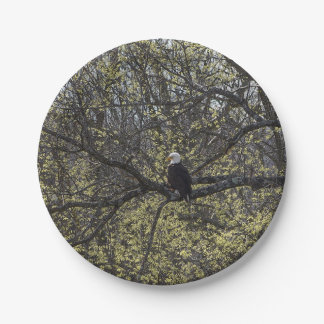 Eagle Lookout Painterly Paper Plate