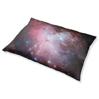 Eagle Nebula Pet Bed