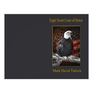 Eagle on Log with Flag Flyer