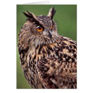 Eagle Owl - Blank Greeting Card