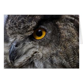 Eagle Owl Eyes Note Card